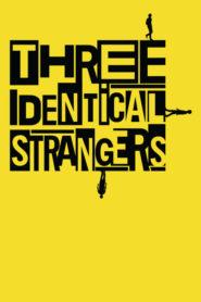 Três Estranhos Idênticos