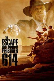 A Fuga do Prisioneiro 614